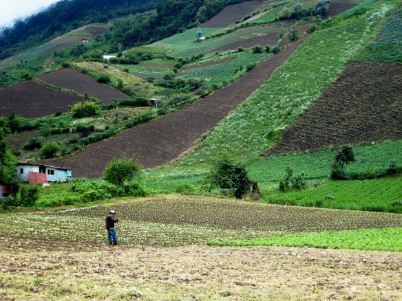 On the other side of the mountain from Boquete is Volcan, the agricultural heart of Panama.