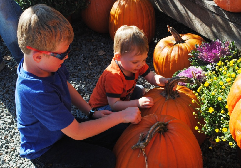 Boys Perfect Pumpkin