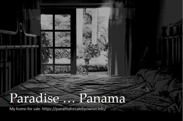Paradise 1
